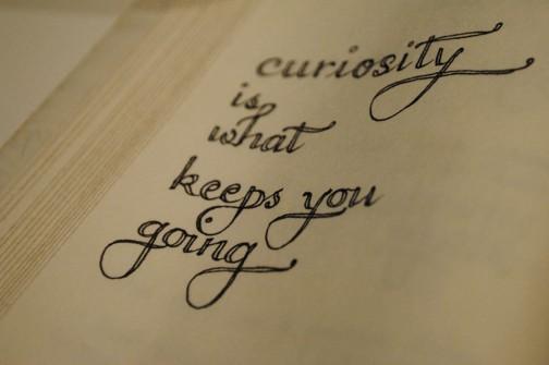 01.21 curiosity